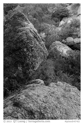 Boulders in gully, Bear Gulch. Pinnacles National Park (black and white)