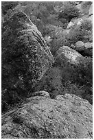 Boulders in gully, Bear Gulch. Pinnacles National Park, California, USA. (black and white)
