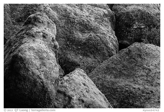 Moss-covered boulders, Bear Gulch. Pinnacles National Park (black and white)