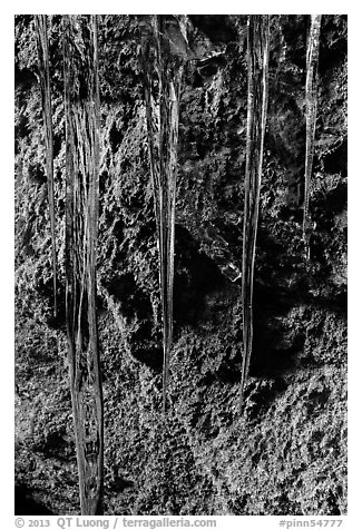 Icicles and mossy rocks, Balconies Caves. Pinnacles National Park (black and white)