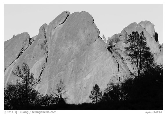 Trees against rocks glowing from sunset. Pinnacles National Park (black and white)