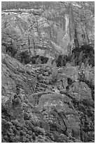 Cliffs and trees. Pinnacles National Park ( black and white)
