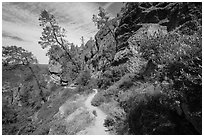 Juniper Canyon trail in spring. Pinnacles National Park, California, USA. (black and white)