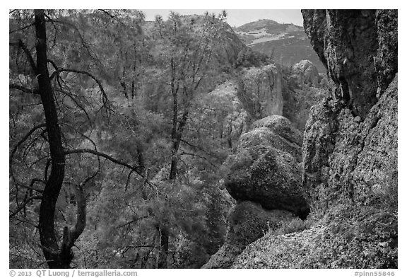 Andesite rock formations. Pinnacles National Park (black and white)
