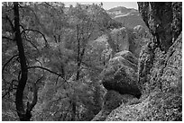 Andesite rock formations. Pinnacles National Park, California, USA. (black and white)
