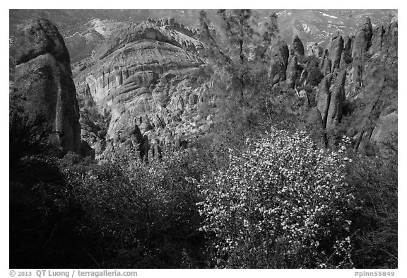 Blooms and Balconies cliffs. Pinnacles National Park (black and white)