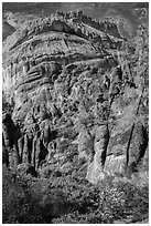 Pinnacles, trees, and Balconies cliffs. Pinnacles National Park, California, USA. (black and white)