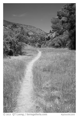 South Wilderness trail. Pinnacles National Park (black and white)