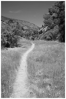 South Wilderness trail. Pinnacles National Park ( black and white)