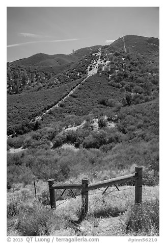 Gate on pig fence. Pinnacles National Park (black and white)