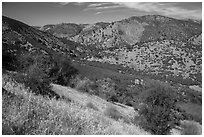 Valley, South Wilderness. Pinnacles National Park ( black and white)