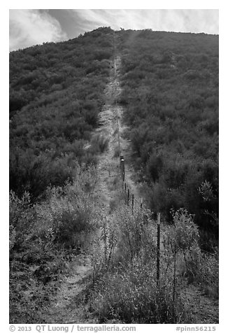 Pig fence climbing steep hill. Pinnacles National Park (black and white)