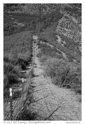 Boundary fence on steep hillside. Pinnacles National Park (black and white)