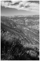 Chaparal-covered hills. Pinnacles National Park, California, USA. (black and white)