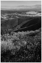 View from South Chalone Peak with wildflowers. Pinnacles National Park, California, USA. (black and white)