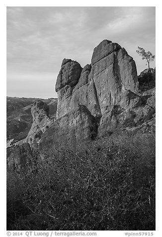 Shrubs and rock towers, autumn sunset. Pinnacles National Park (black and white)