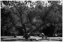 Campground. Pinnacles National Park ( black and white)