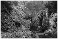 Balconies Cave trail. Pinnacles National Park ( black and white)