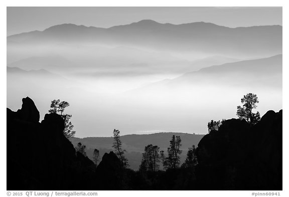 Silhouetted pinnacles and trees, mountains and valley fog. Pinnacles National Park (black and white)