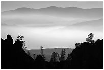 Silhouetted pinnacles and trees, mountains and valley fog. Pinnacles National Park ( black and white)