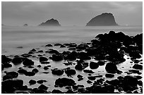 Rocks and sea stacks, blue hour, False Klamath Cove. Redwood National Park, California, USA. (black and white)