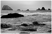 Seastacks and surf in foggy weather, Hidden Beach. Redwood National Park, California, USA. (black and white)