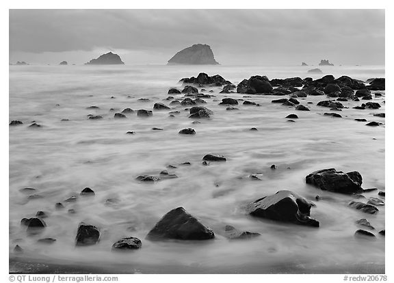 Wave motion over rocks in the purple light of dusk. Redwood National Park (black and white)
