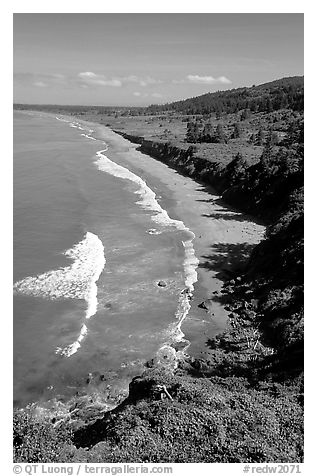 Crescent Beach from above. Redwood National Park (black and white)