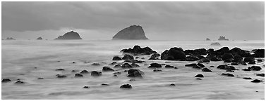 Rocks and seastacks at dusk. Olympic National Park (Panoramic black and white)