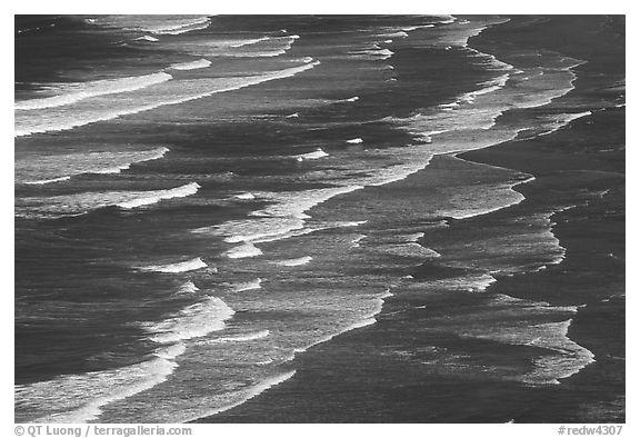 Surf on Crescent Beach, seen from above. Redwood National Park (black and white)
