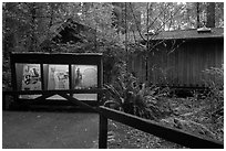 Exhibit and visitor center, Jedediah Smith Redwoods State Park. Redwood National Park ( black and white)