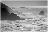 Surf, seastacks, and fog near Enderts Beach. Redwood National Park ( black and white)