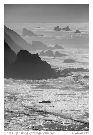 Ragged coastline near Enderts Beach. Redwood National Park (black and white)