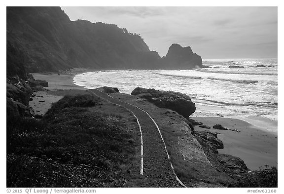Trail and Enderts Beach. Redwood National Park (black and white)