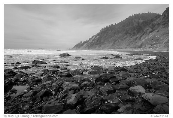 Enderts Beach. Redwood National Park (black and white)