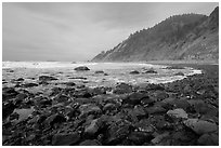 Enderts Beach. Redwood National Park ( black and white)