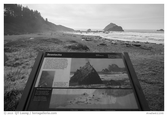False Klamath Cover, Seastacks interpretive sign. Redwood National Park (black and white)