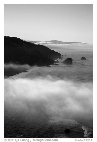 Costal clouds in early morning, Klamath River Overlook. Redwood National Park (black and white)