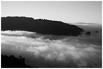 Low fog at the mouth of Klamath River. Redwood National Park ( black and white)
