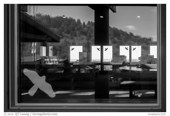 Hillside with trees, ocean,  Kuchel Visitor Center window reflexion. Redwood National Park (black and white)