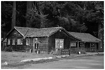 Visitor Center, Prairie Creek Redwoods State Park. Redwood National Park ( black and white)