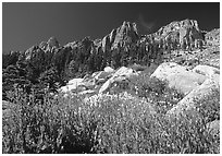 Alta Peak range. Sequoia National Park, California, USA. (black and white)