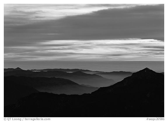 Ridges and sea of clouds at sunset. Sequoia National Park (black and white)