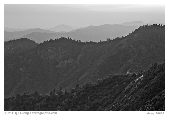 Forested ridges at sunset seen from Moro Rock. Sequoia National Park (black and white)