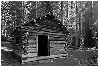 Squatters Cabin. Sequoia National Park, California, USA. (black and white)