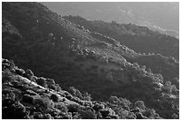 Hill ridges. Sequoia National Park ( black and white)
