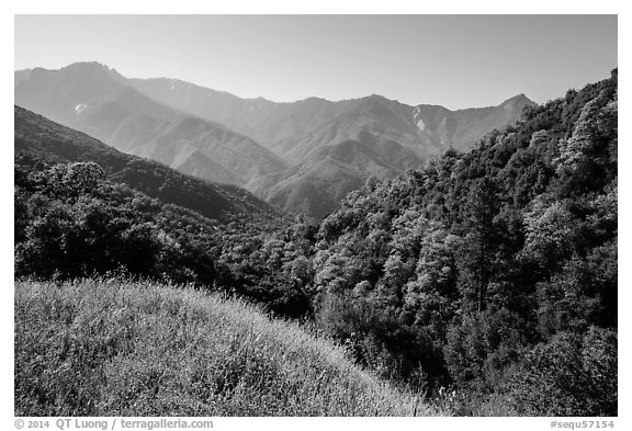 Hills and mountains in spring near Amphitheater Point. Sequoia National Park (black and white)