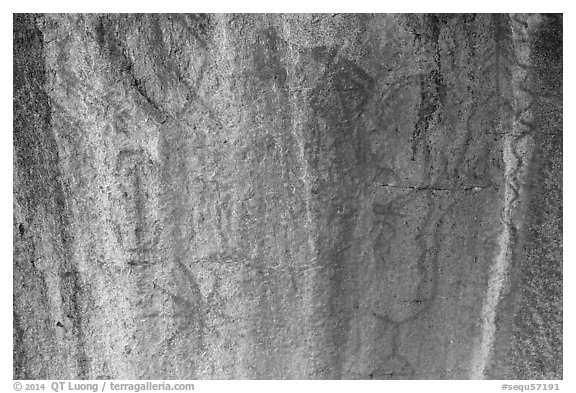 Ancient rock paintings, Hospital Rock. Sequoia National Park (black and white)