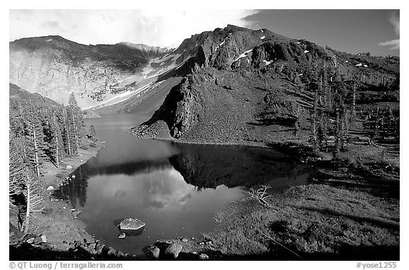 Ellery Lake in summer. California, USA (black and white)