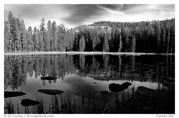 Boulders and reflections, Siesta Lake, afternoon. Yosemite National Park (black and white)